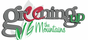 2019 Sylva Mountains Spring Festival